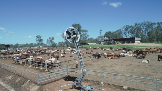 7---Evaporative-Cooling---Tow-&-Blow-being-used-to-cool-cattle-in-the-hot-conditions-at-a-feedlot