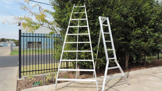 orchard picking ladder